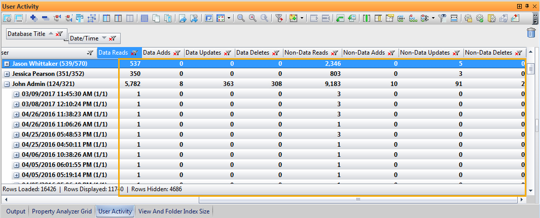 Image of databaseEZ's User Activity panel showing the totals for all types of User Activity.